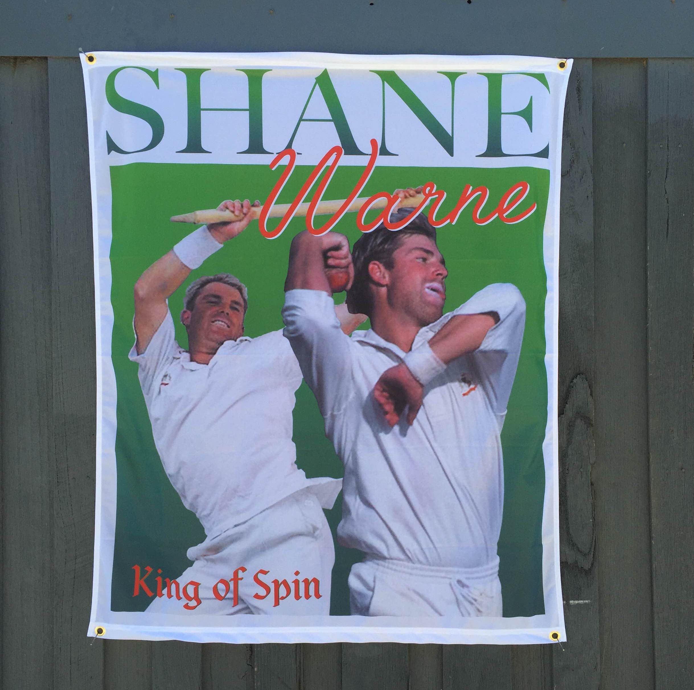 SPIN KING CRICKET WALL HANGING 975 X 1200MM