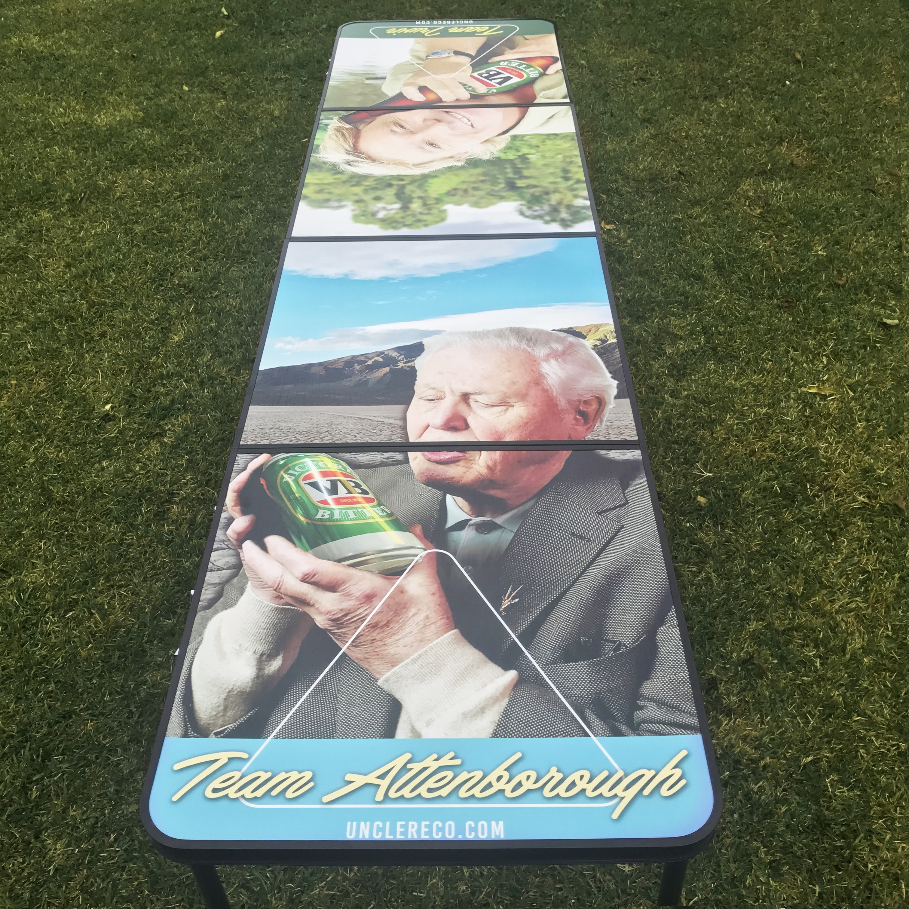 TEAM IRWIN V ATTENBOROUGH FOLDING BEER PONG TABLE