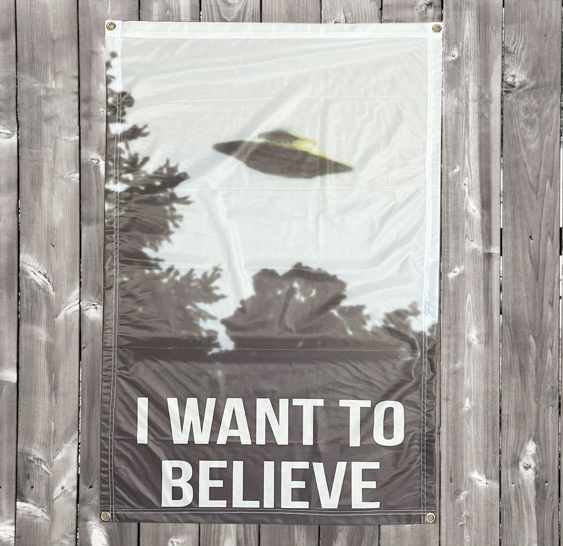 WANT TO BELIEVE X FILES WALL HANGING 655 X 1000MM