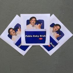 3 PACK OF ESKY STICKERS